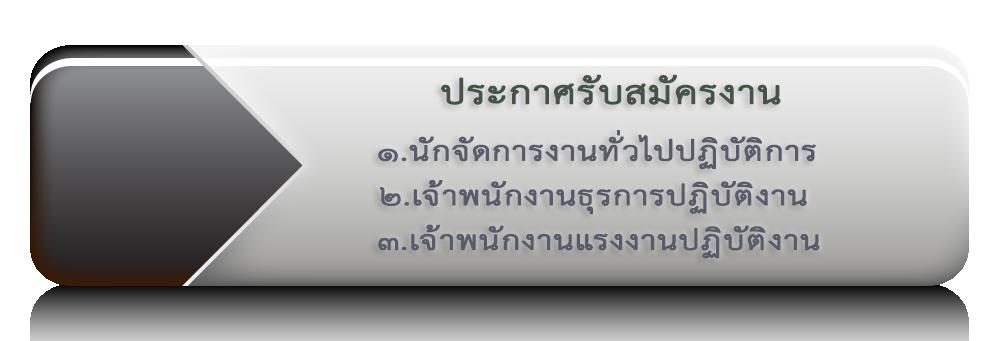 https://doe.thaijobjob.com/