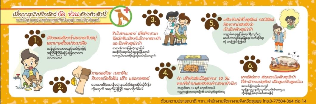 ป้องกันการถูกสุนัขกัด