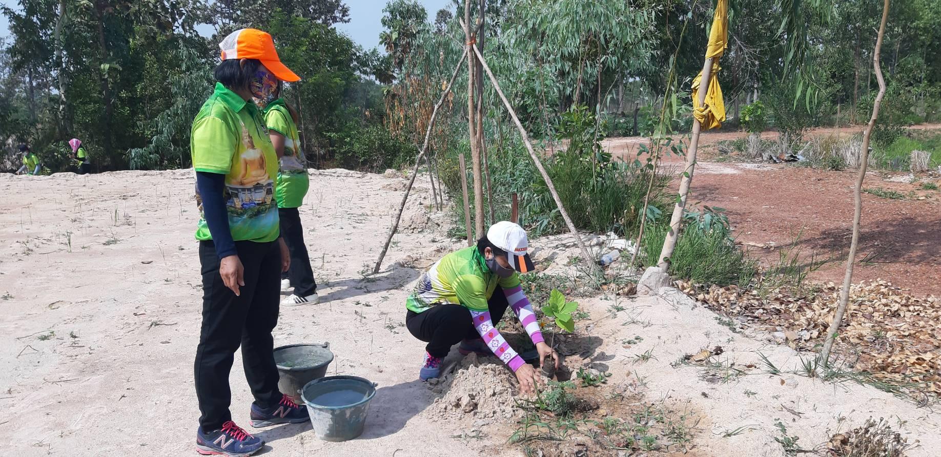 โครงการปลูกต้นไม้ เพื่อแผ่นดิน สืบสานสู่ ๑๐๐ ล้านต้น (7 พฤษภาคม 25563)