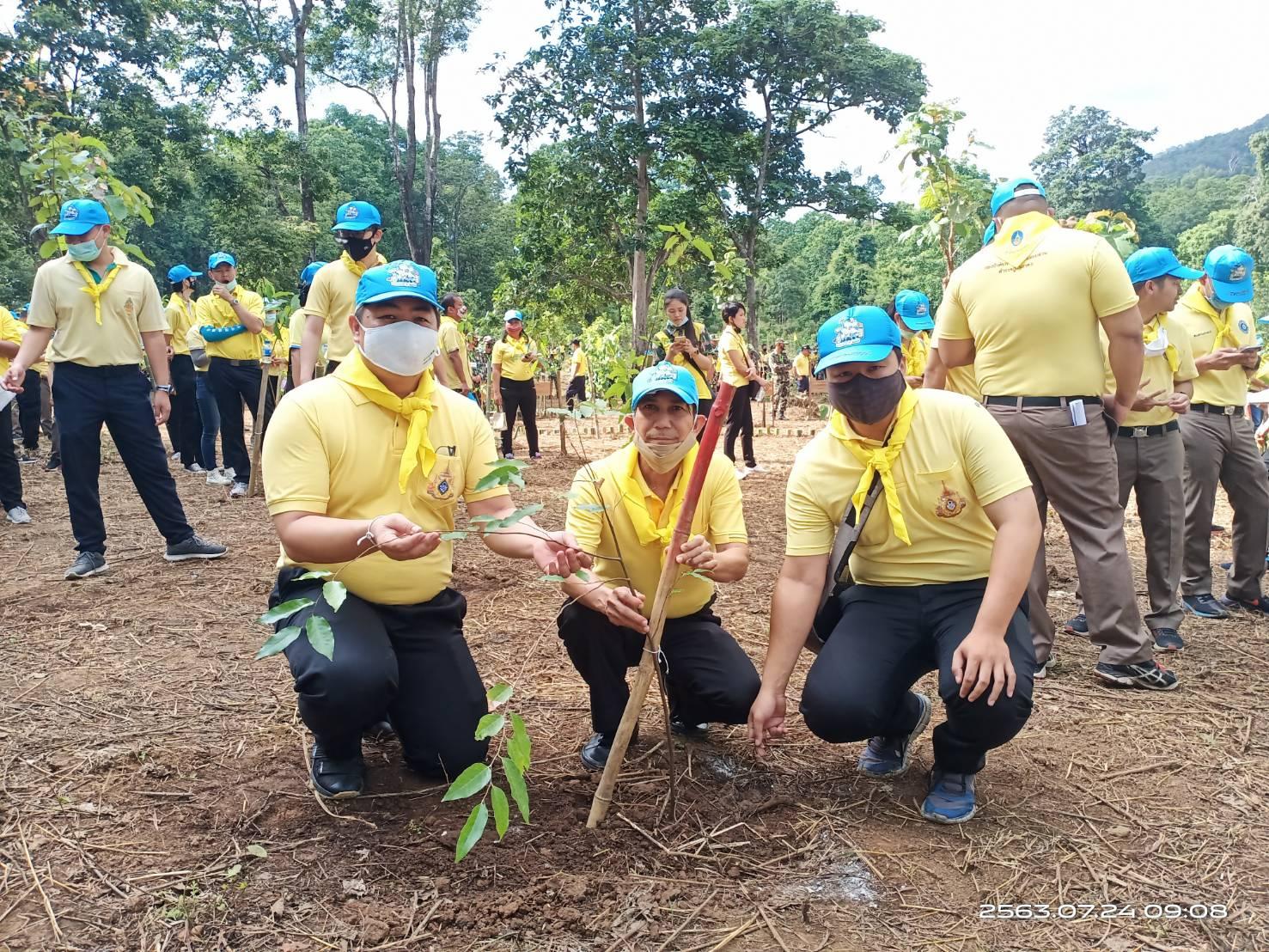 จัดหางานเชียงใหม่ ร่วมกิจกรรมโครงการปลูกป่าและป้องกันไฟป่า ณ อุทยานแห่งชาติน้ำตกบัวตอง-น้ำพุเจ็ดสี